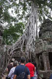 people at Ta Prohm in Siem Reap Cambodia