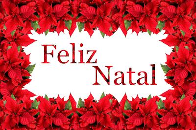 Feliz Natal - Flor de Natal