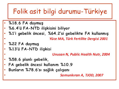 turkiyede folic asit kullanımı