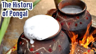 history of pongal festival in english