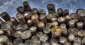 Tahapan pemanenan di hutan alam terdir dari perencanaan pemanenan sampai pembuatan laporan. Pemanenan di hutan alam dilakukan dengan berbagai tahap sampai hasil panen terebut dapat di keluarkan dari dalam hutan. Pemanenan kayu adalah serangkaian kegiatan untuk memindahkan kayu dari hutan ke tempat penggunaan atau pengolahan (Conway, 1982). Sedangkan pemanenan hasil hutan merupakan usaha pemanfaatan kayu dengan mengubah tegakan pohon berdiri menjadi sortimen kayu bulat dan mengeluarkannya dari hutan untuk dimanfaatkan sesuai peruntukkannya (Mujetahid, 2010).