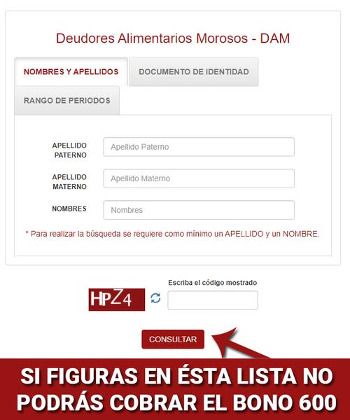 Consulta El Registro De Alimentarios Morosos Del Poder Judicial