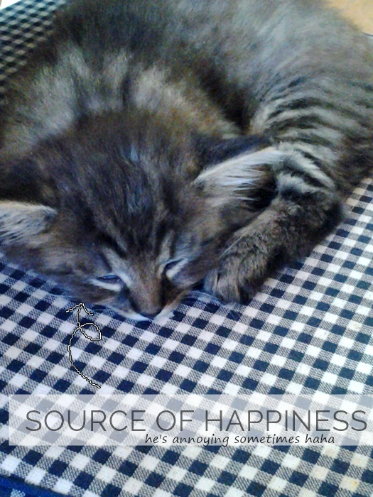 Happiness is when we can make others happy