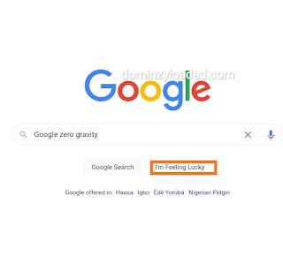 Google zero gravity page