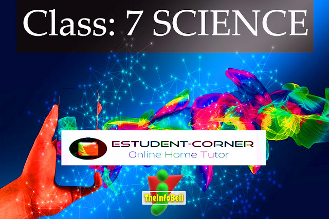 Class 7, Science, In Assamese Medium, Content Page, All Lessons, Solutions
