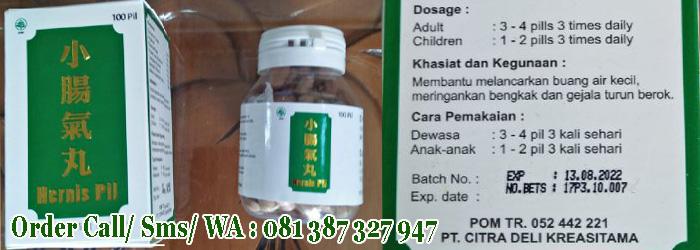 OBAT HERNIA HERBAL RESMI TERDAFTAR BPOM INDONESIA, obat hernia anak, obat hernia dewasa