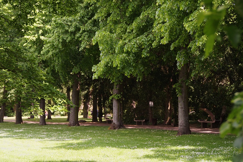 Wörlitzer Garten