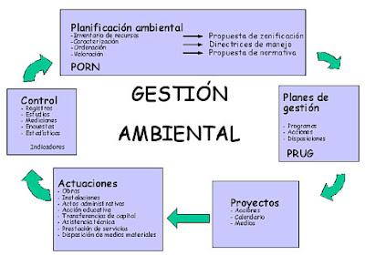Conclusión gestión ambiental