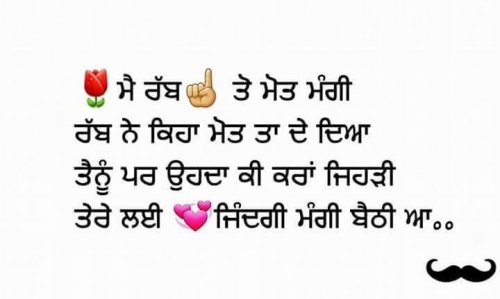 Flower Status In Punjabi Whatsapp