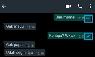 Cara Melihat Status Whatsapp Tanpa Ketahuan 8