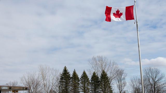 Experto canadiense cree muy probable que la vacuna contra el covid-19 esté lista en unos meses