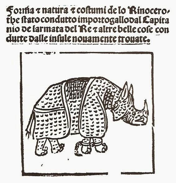Giovanni Giacomo Penni - Rinoceronte