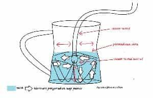 Proses Pembuatan Latte Art