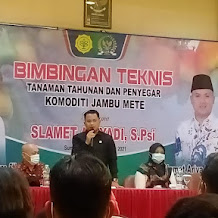 Anggota Komisi IV DPR RI Slamet Ariyadi Dorong Pengembangan Jambu Mete Madura