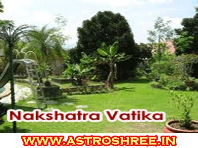 plants for nakshatra vatika