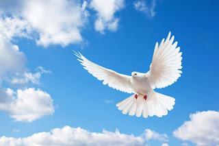 ¿Quien es el Espíritu Santo?