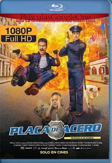 Placa De Acero [2019] [1080p BRrip] [Latino] [HazroaH]