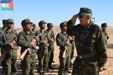 تقرير اممي يكشف ان سحب المغرب وجبهة البوليساريو تواجدهما العسكري من الكركرات حال دون اندلاع الحرب