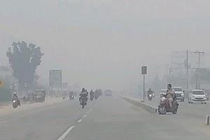 Jokowi Didesak Segera Tetapkan Kabut Asap Jadi Bencana Nasional