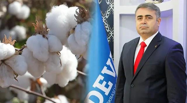 Tüysüz: Piyasada pamuk tohumu bulunmuyor