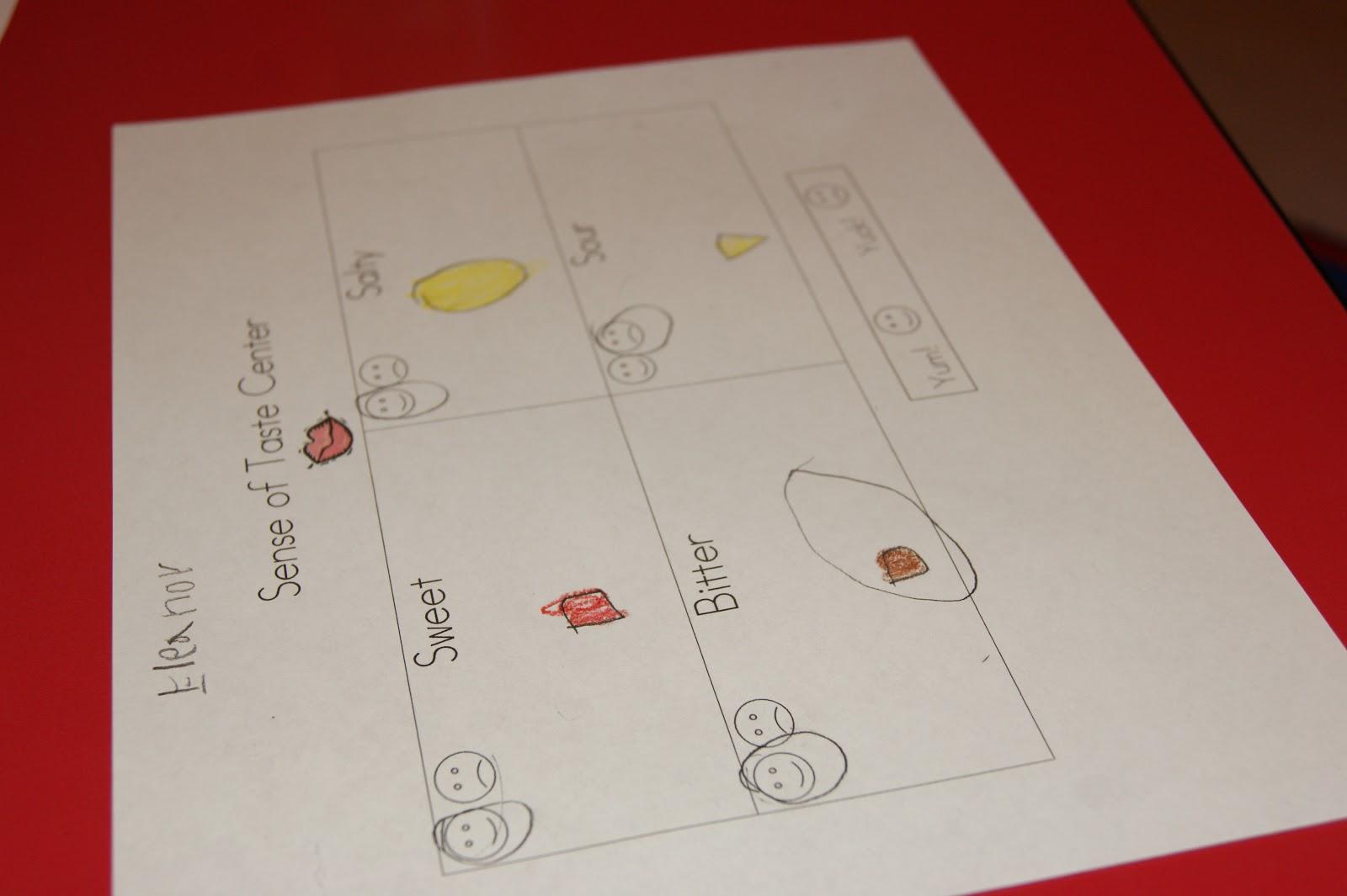 Ms Boedee S Kinder Prep Five Senses Day 2