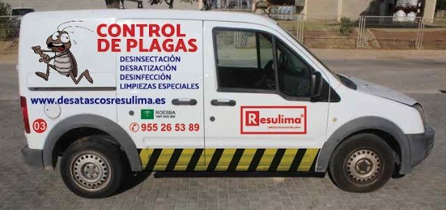 Empresa de control de plagas en Sevilla