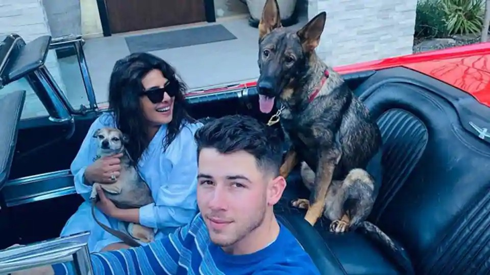 Actors Gossips: Priyanka Chopra is reunited with Nick Jonas after Matrix 4 shoot in Berlin, shares pics of her perfect family