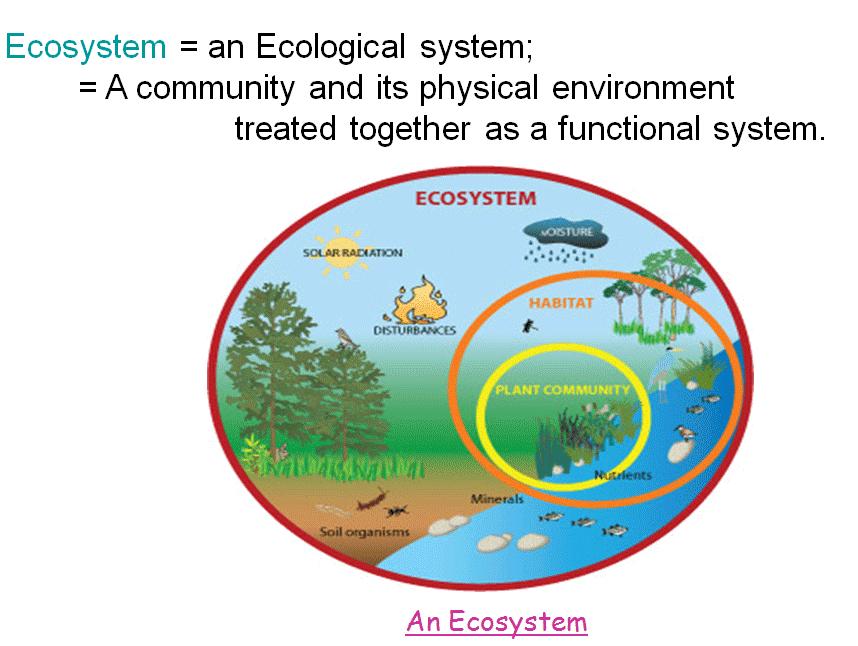 relationship between biosphere biome ecosystem population