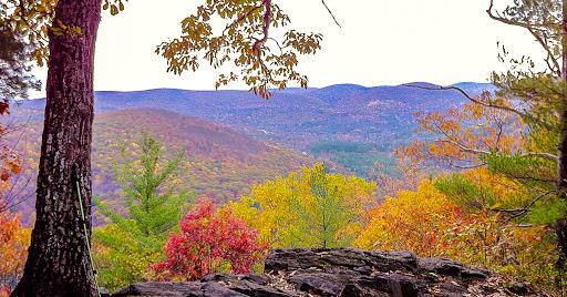 Appalachian Trail's Pine Knob Loop Trail section Photo: Morrow Long