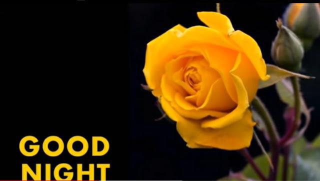 Good Night Shayari-Hindi Shayari-Good Night Shayari In Hindi