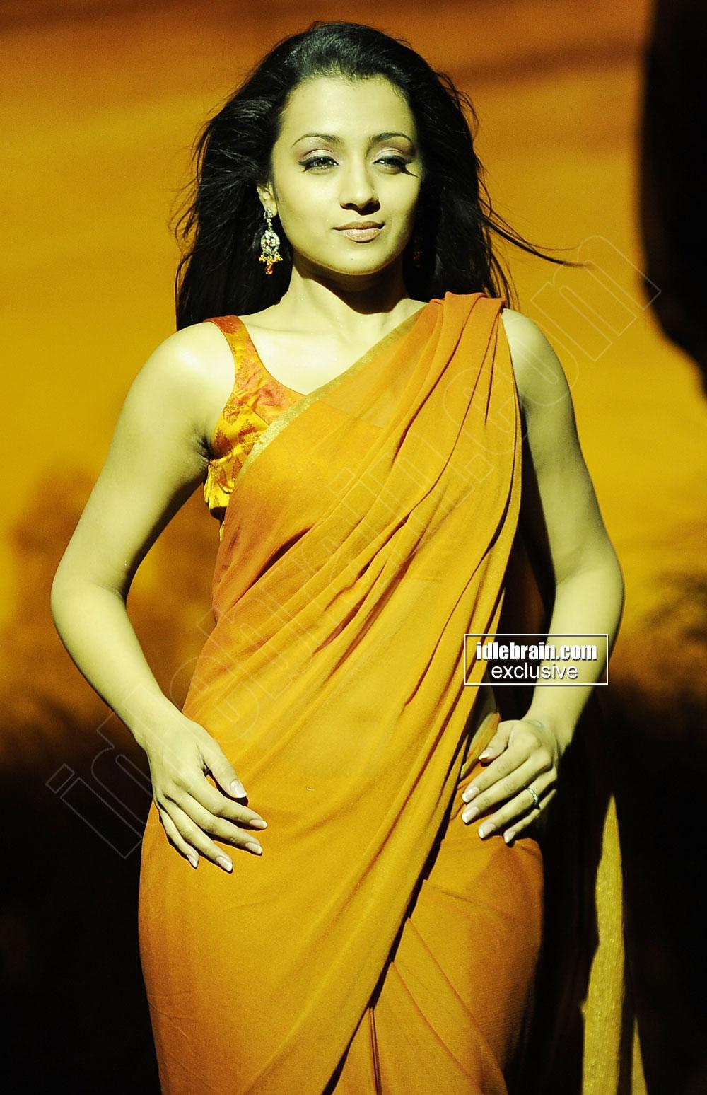 Trisha Krishnan In Saree Horny Expressions - Sabwoodcom-9692