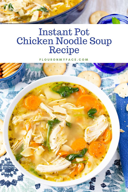 Instant Pot Chicken Noodle Soup Recipe
