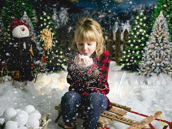 Holiday Photo Backdrops from KateBackdrop