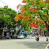 Mùa hạ ở Sài Gòn- Huy Uyên