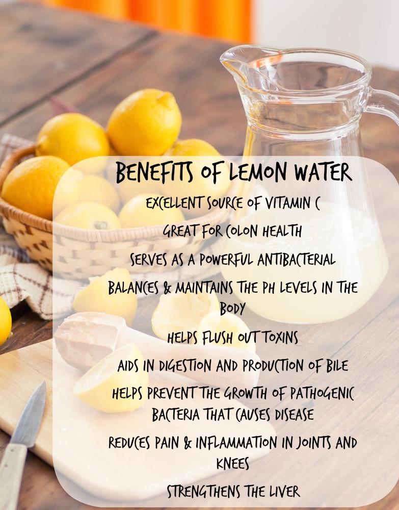 5 Makanan Yang Penting Jika Niat Nak Kurus Cepat dan Detox ...