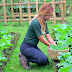 The Blooming Organic Farms in CALABARZON