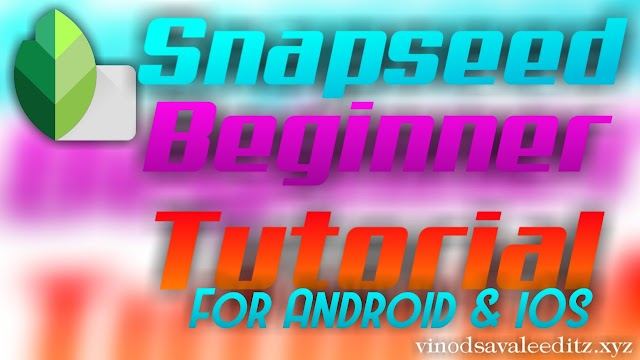 Snapseed Beginner Tutorial | For Android & iOS User