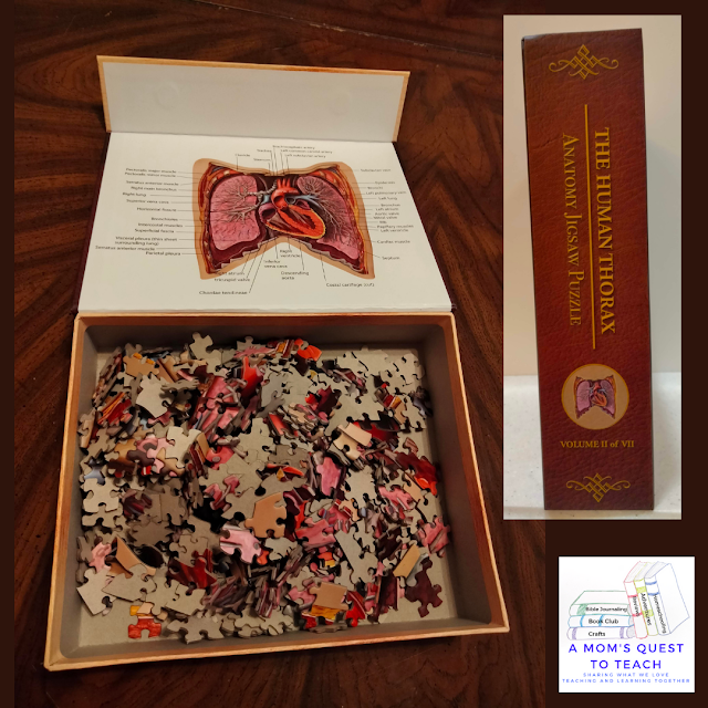 A Mom's Quest to Teach Logo; thorax puzzle pieces and spine of puzzle box