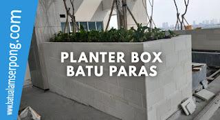 planter box batu paras