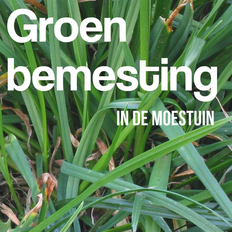 groenbemesting groenbemesters groenbemester
