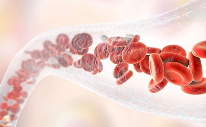 El superalimento que mejora la circulación y la salud de la piel