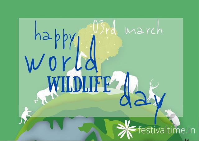 www.festivaltime.in