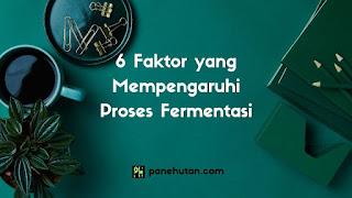 6 Faktor yang Mempengaruhi Proses Fermentasi