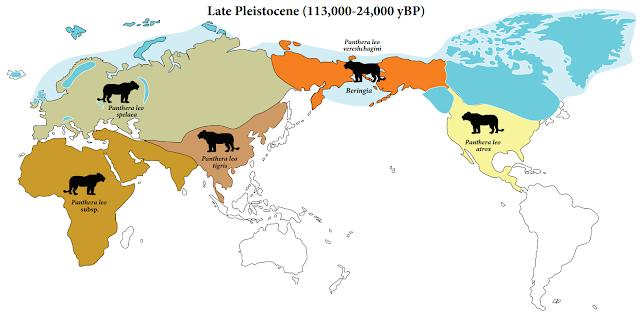 Mapa de la distribución del león europeo - Panthera leo spelaea