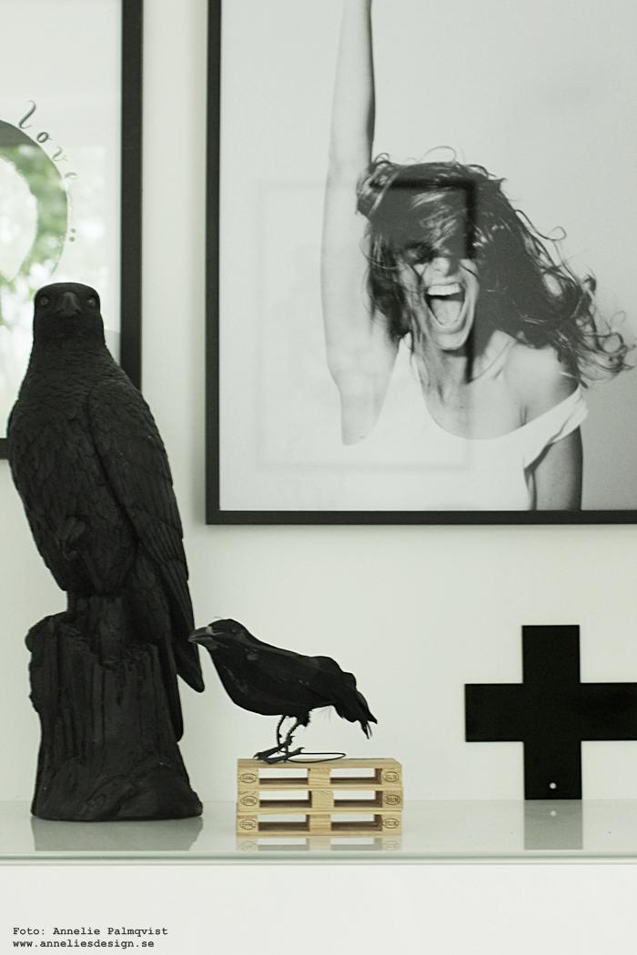 annelies design, webbutik, webshop, nätbutik, kors, falk, fågel, fåglar, kråka, svartvit, svartvitt, svart och vit, svart och vitt, lastpallar, lastpall, mini, miniatyr, glasunderlägg, tavlor, tavla, poster, posters, print, prints, konsttryck, modell, modellfoto, foto, fotografier, artprints, fotokonst, modellfoto,