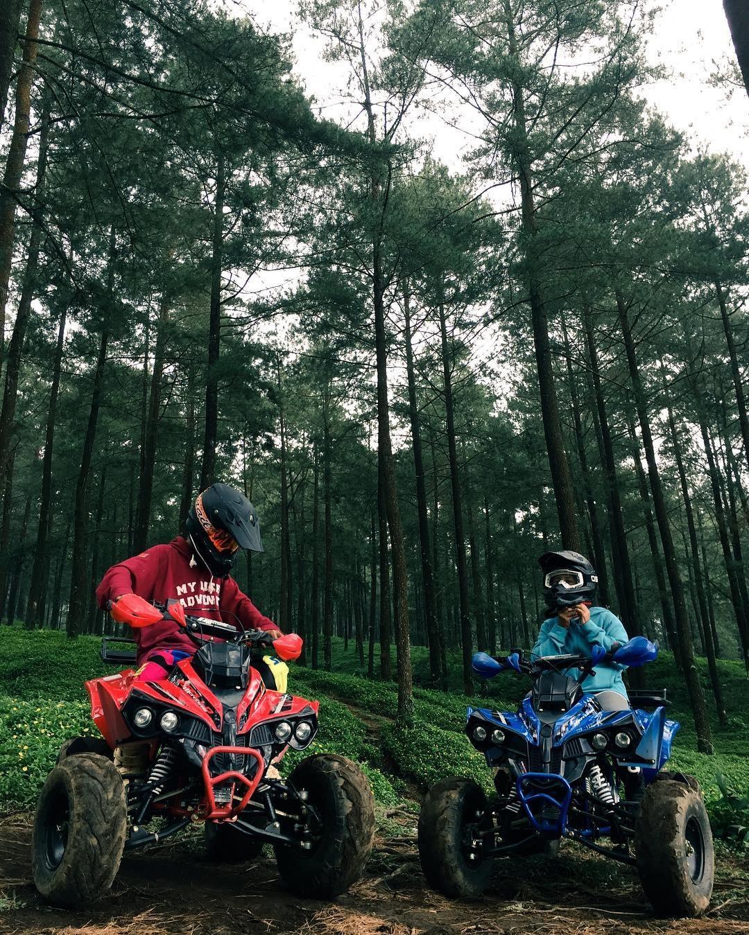 Wahana ATV Hutan Pinus Limpakuwus