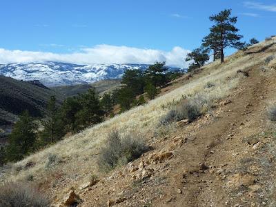 Upper Evans Trail