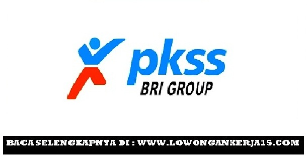 Lowongan kerja PKSS BRI Group Tahun 2017