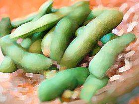 枝豆(素材)