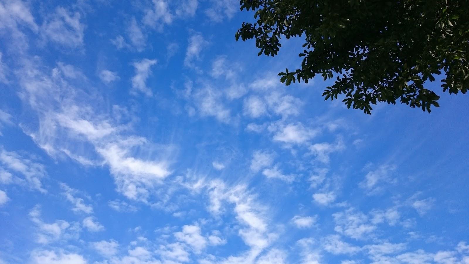 秋の良く晴れた空